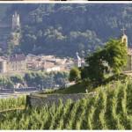 rhone winerist 2pic